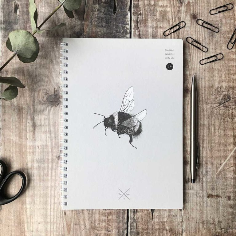 Creature-Candy-ring-notebook-bee-PTES