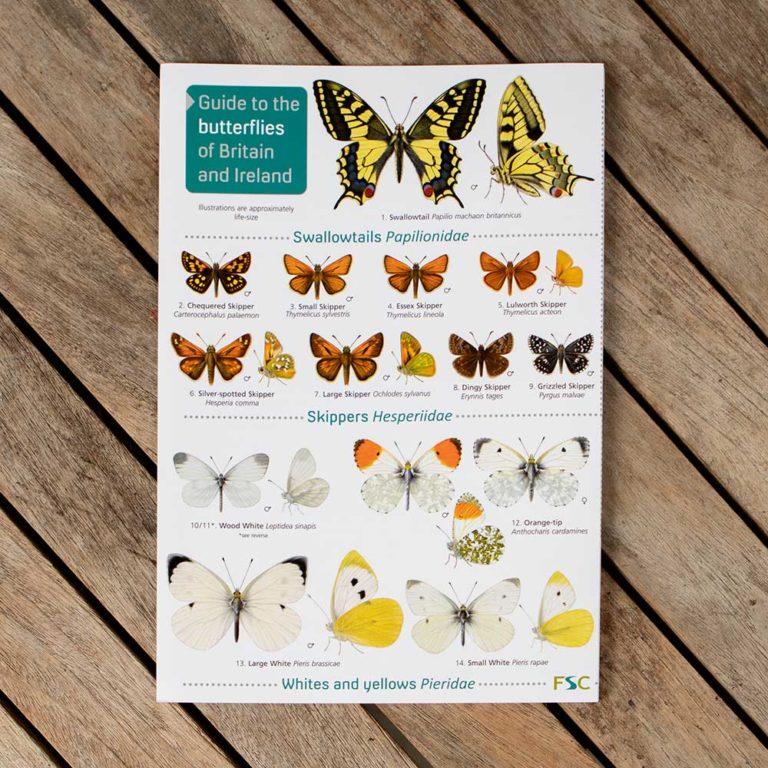 Butterflies-FSC-Guide-1-PTES